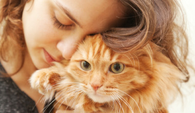 Signs of a Healthy Cat and Common Signs of Illness