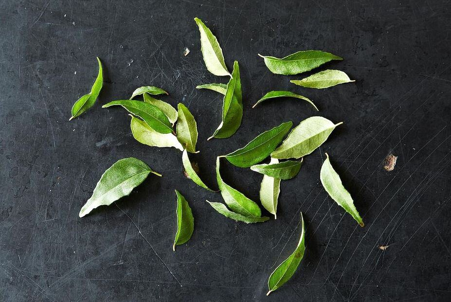 Curry Leaf for Weight Loss