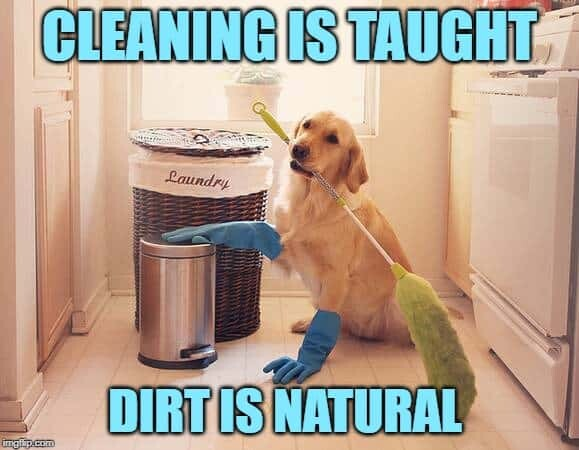 house cleaning memes 4