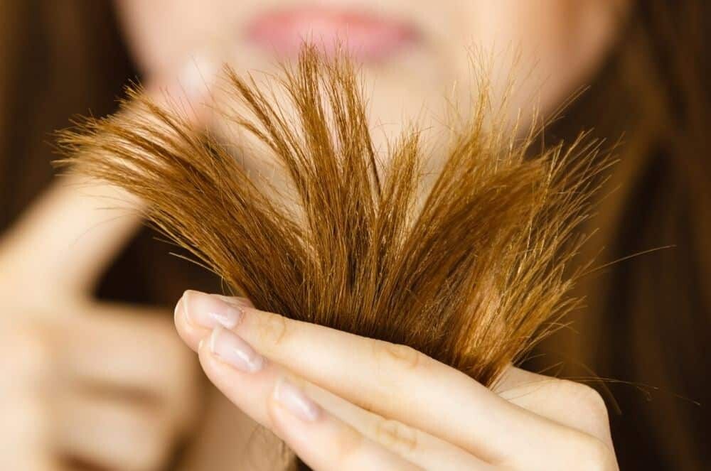 12 Home Remedies for Dry Hair Treatments