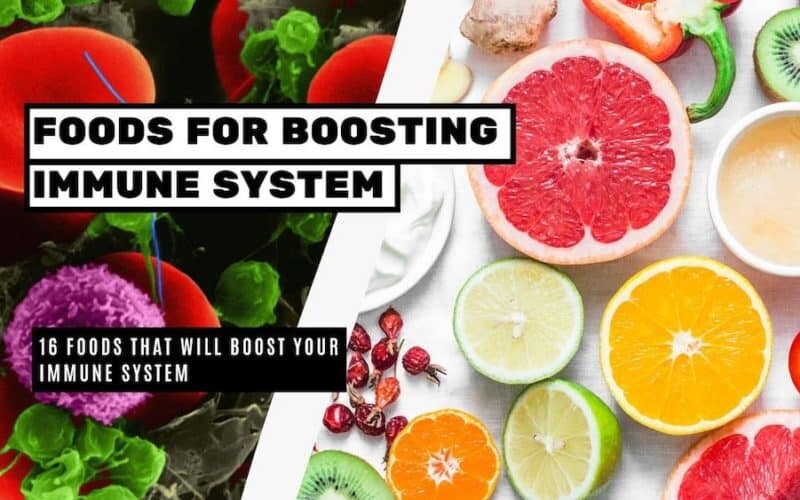 Foods that will Boost Your Immune System