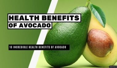 10 Incredible Health Benefits of Avocado