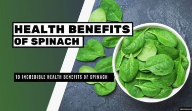 10 Incredibles Health Benefits Of Spinach