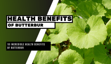 10 Incredible Health Benefits of Butterbur
