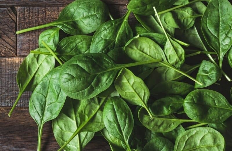 Spinach for anti-aging